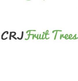 www.fruit-trees.com